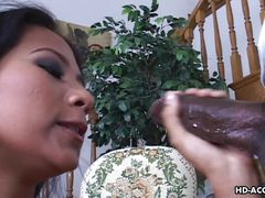 Tasty Chocolate For Hot Latina